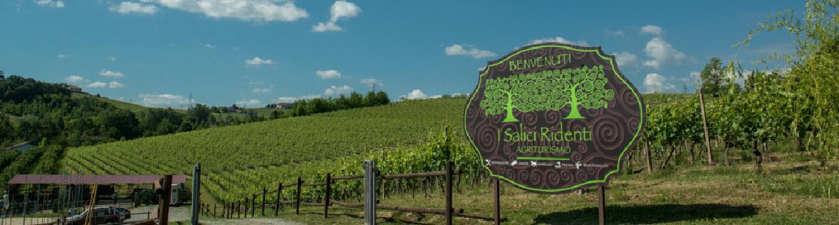 Agriturismo in Monferrato Salici Ridenti